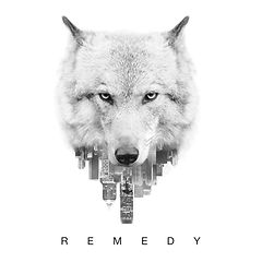 Quincy_Davis_Remedy_Album_Cover.jpeg
