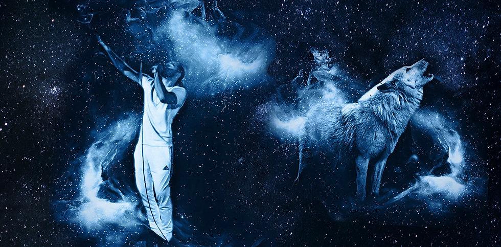 quincy_davis_cosmic wolf banner9.jpg