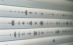 voice edit
