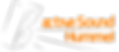 Logo_activeSound_190.png