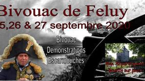 Report Feluy 2020