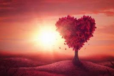 Guided LOVE Meditation