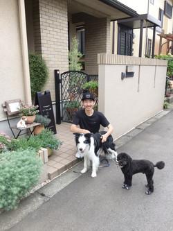お散歩から帰ってきたソルくん(ボーダーコリー)と看板犬クーの写真