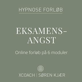 Webshop_coverbilleder_eksamensangst.png
