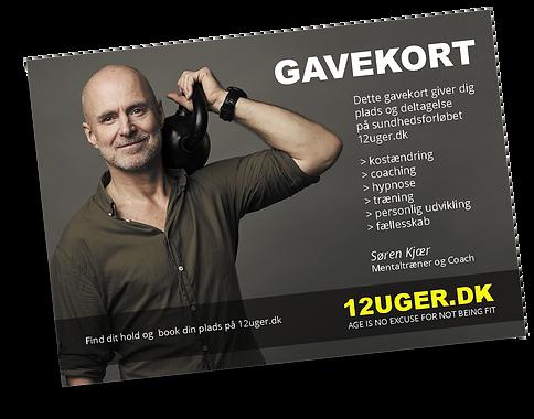 Gavekort_12UGER_2020_skygge.png