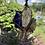 Thumbnail: Shamanic Sacred Ankh (Lapis Lazuli, Citrine, Dragons Stone & Super 7)