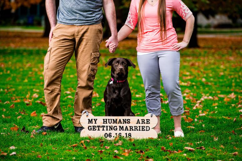 Dog Engagement Lanari Photography
