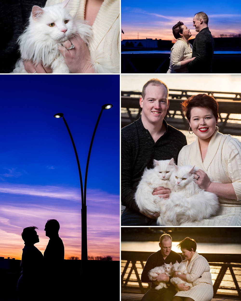 Engagement Photos with Cat | City Deck Green Bay | Lanari Photography