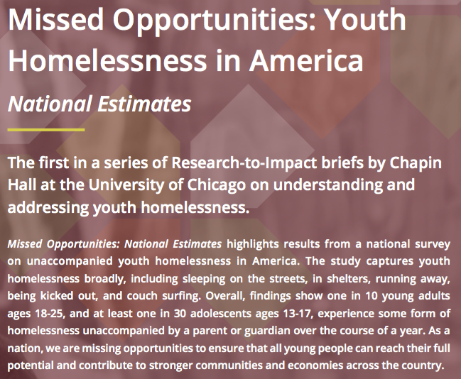 Missed Opportunities: Youth Homelessness Brief