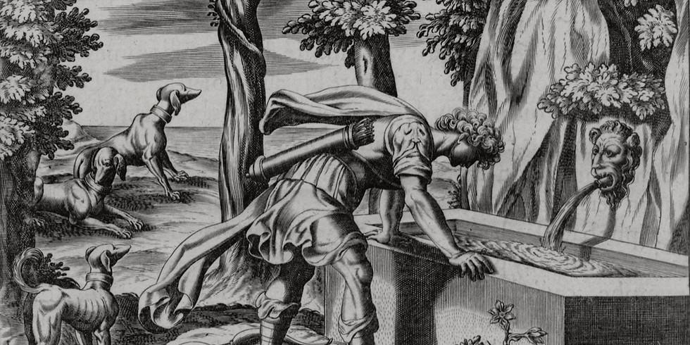 Mgr. Markéta Kučerová – Narcis