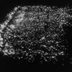 Workshop – chůze po žhavém uhlí