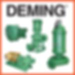 Deming Chopper Pumps