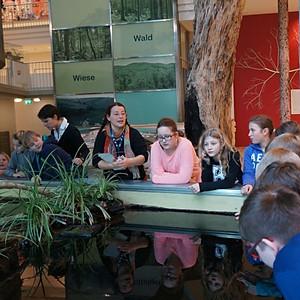 Landesmuseum 2 Klasse