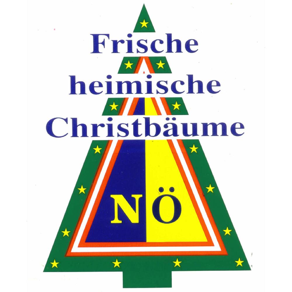 Christbaum Pfeiffer