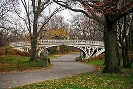 Bridge_Central_Park.jpg