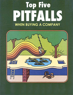 Pitfalls when buying a company