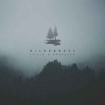 Wilderness Album Art test.jpg