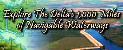 Calfornia Delta