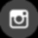 iconfinder_instagram_circle_294711.png