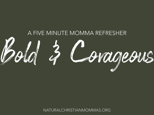 Be Bold & Courageous: A 5 Minute Momma Refresher