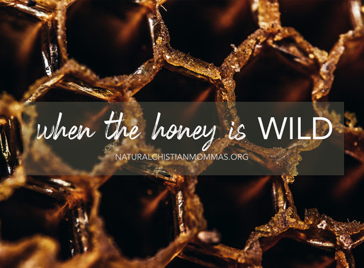 When the Honey is Wild