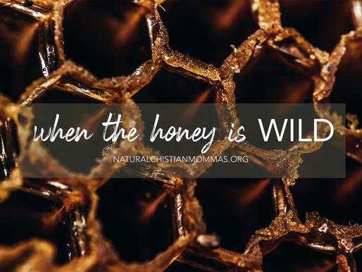 When the Honey is Wild