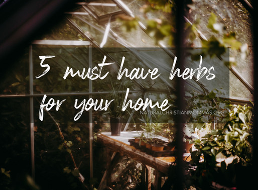 Five Must Have Herbs for Your Home