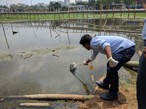 A field team member grabs a surface water sample in Dhaka.