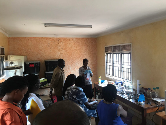 The field team gathers around in the laboratory to watch and learn how to test field samples for E. coli.