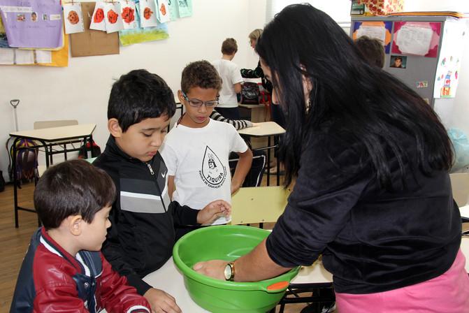 Educando para o Mundo - Prof. Evelyn de Paula