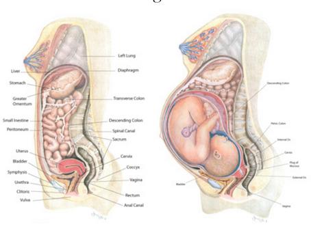 That First Month Postpartum