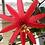Thumbnail: Passiflora distephana Peru