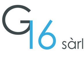 G16 Logo_trsp_AI.png