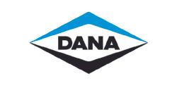 Dana_Mesa de trabajo 1