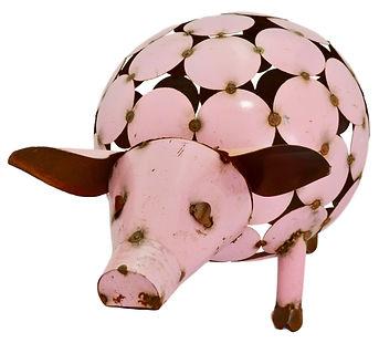 pig circles.jpg