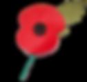 poppy1.png