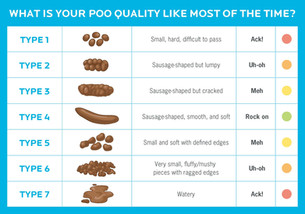 Let's Talk About Poo!