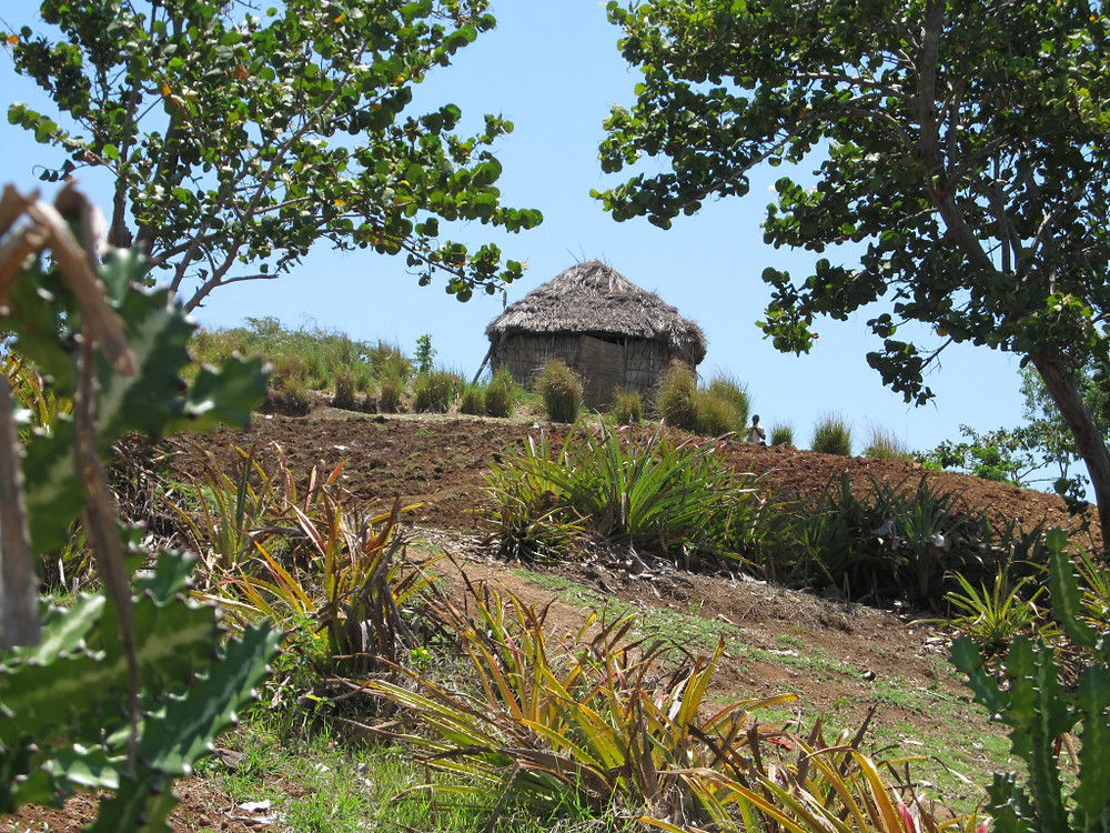 Home on Ile-a-Vache