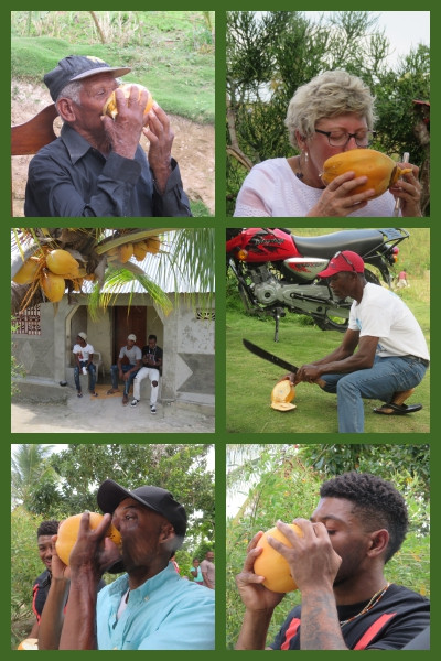 raapcoconut