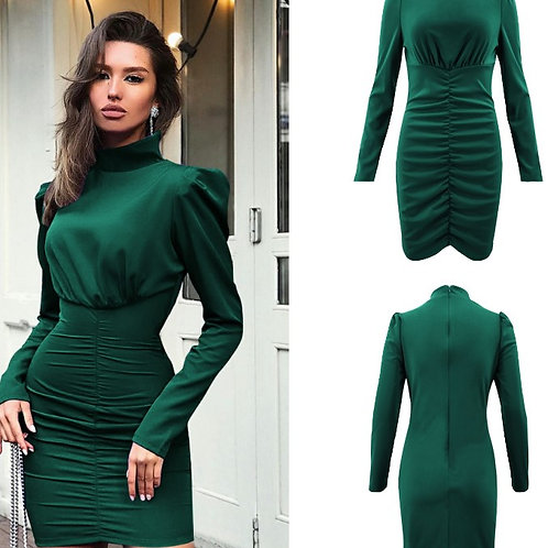 Turtleneck Snug Fit Dress