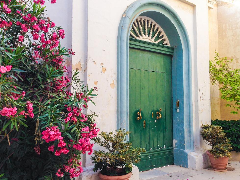 Malta flores.jpg