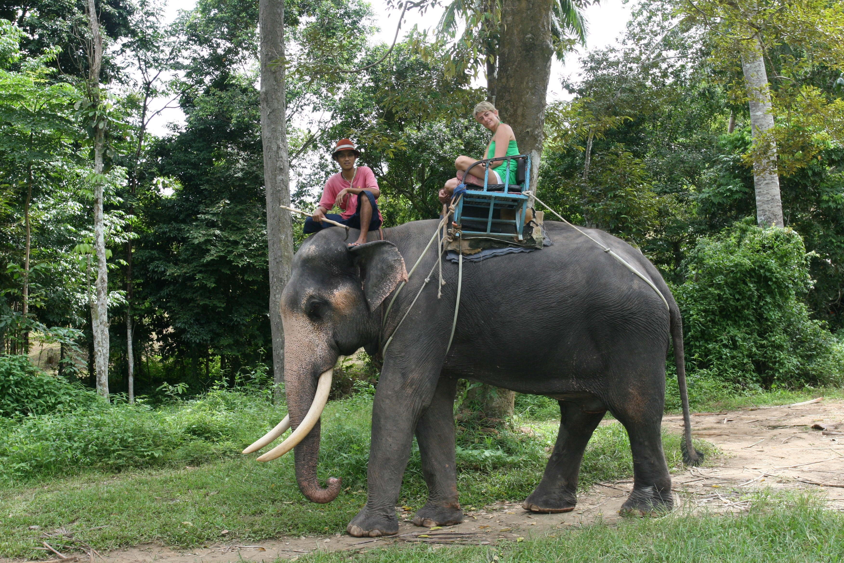 Andrea en elefante Samui 2007-II