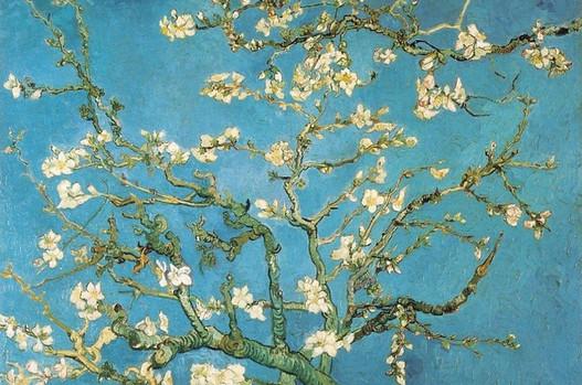 Van Gogh. Almendro en flor.jpg