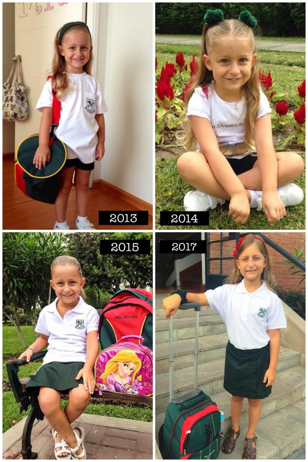 Collage escolar SS 2012-2017.jpg