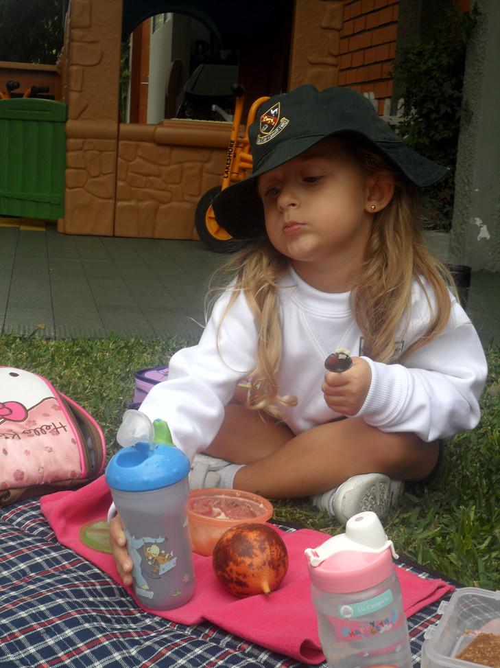 eco picnic (12).JPG