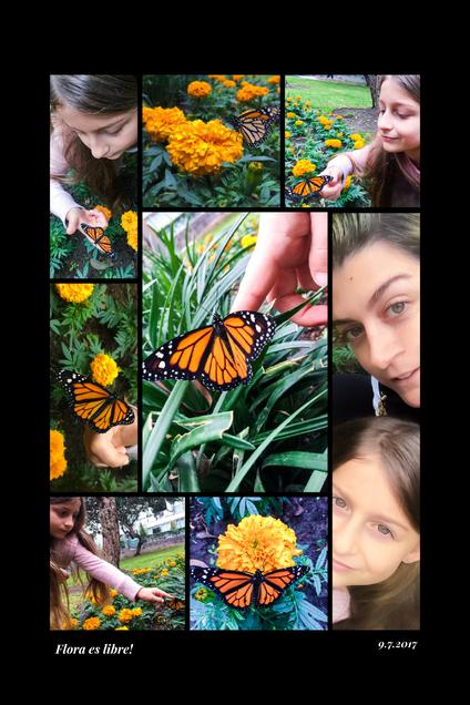 Flora libre