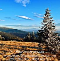 mountains_trees_grass_autumn_sky_108318_