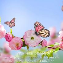 flowers_butterflies_spring_bloom_branch_