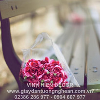 bouquet_bench_carnations_close_up_blurre