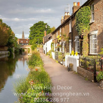 channel_flowers_grass_path_river_houses_